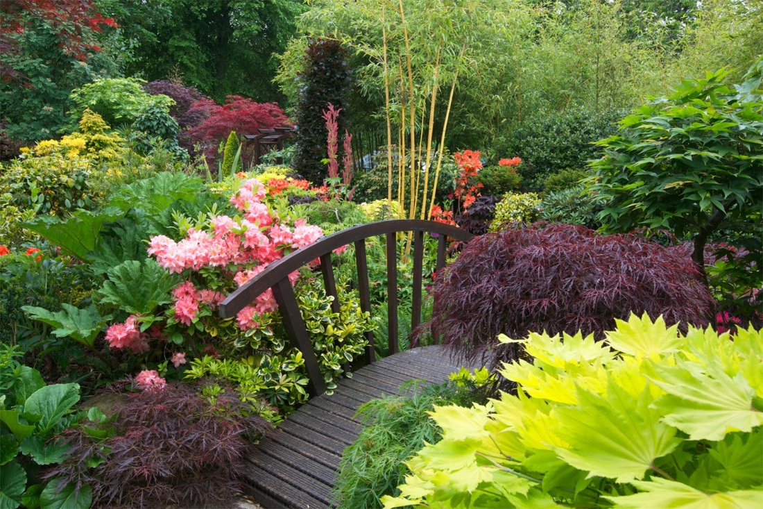 Most beautiful gardens - Picture